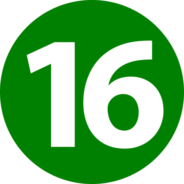 16_icon-svg